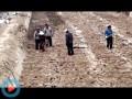 翠绿藕业视频8