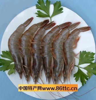 对虾身体的后部为腹部
