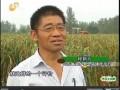 乡村季风报道:程新元:敢做第一个吃螃蟹的人